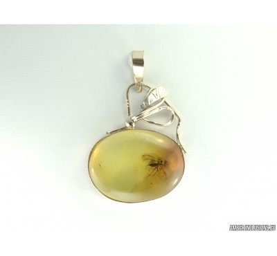 Genuine Baltic amber golden pendan with fossil insect- Fly. #g160_0004