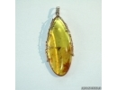 Genuine Baltic amber golden pendant with fossil insect- Gnat #g160_0008
